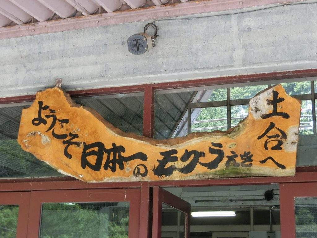 土合駅は日本一のモグラ駅