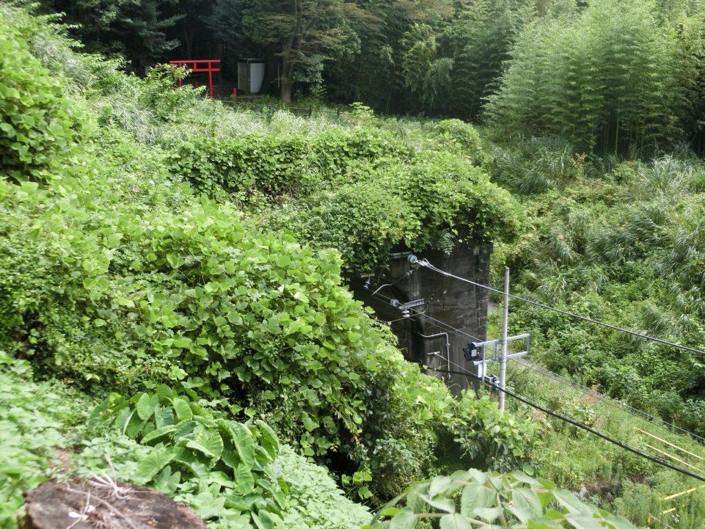 御殿場線のトンネル出口の上にある線守稲荷の鳥居