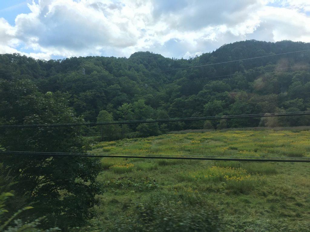 根室本線の浦幌~厚内間は山がちの路線