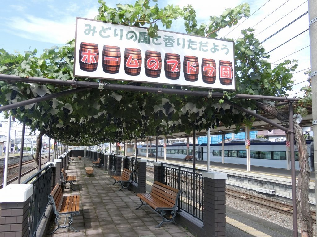 塩尻駅のブドウ園
