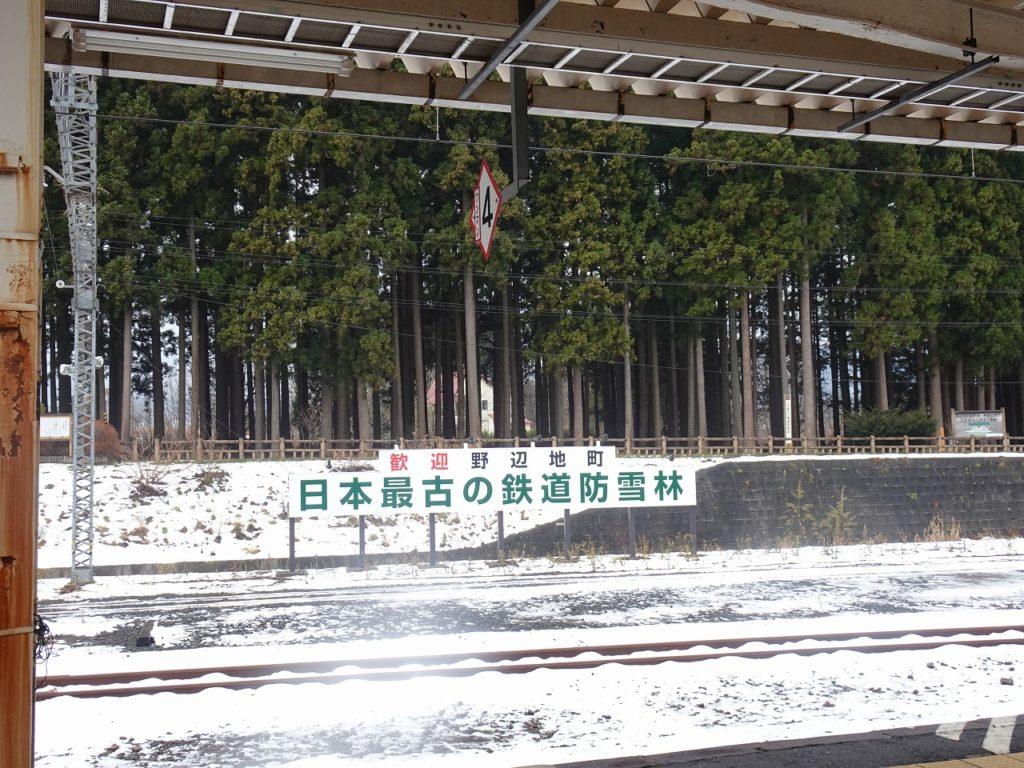 青い森鉄道の野辺地駅にある日本最古の防雪林