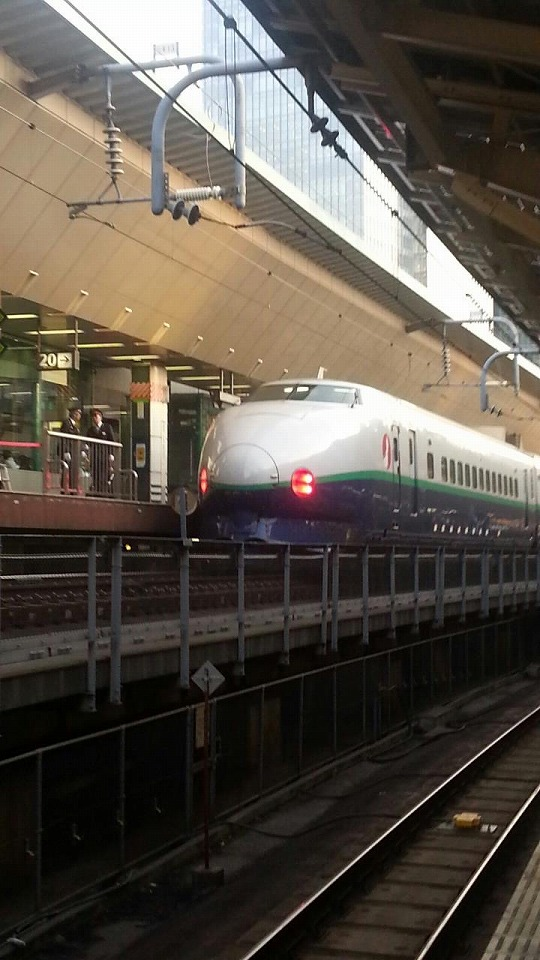 2013年2月の東京駅にて、最晩年の200系